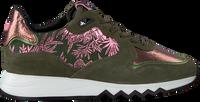 Groene FLORIS VAN BOMMEL Lage sneakers 85302  - medium