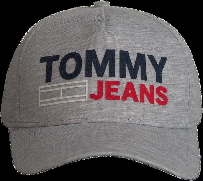 Grijze TOMMY HILFIGER Pet TJU FLOCK CAP  - large