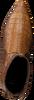Cognac PERTINI Enkellaarsjes 16146 - small