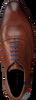 Cognac FLORIS VAN BOMMEL Nette schoenen 19048  - small