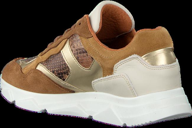 Cognac TANGO Sneakers KADY  - large