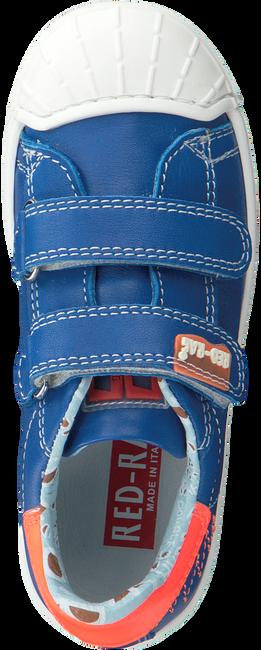Blauwe RED RAG Sneakers 15385  - large