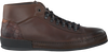 Bruine GREVE Sneakers 6544  - small