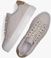 Grijze HABOOB Lage sneakers P6729HAB  - medium