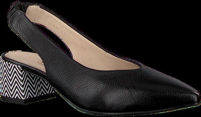Zwarte LODI Sandalen CESAR-GORI  - large