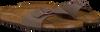 Bruine BIRKENSTOCK PAPILLIO Slippers MADRID  - small