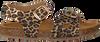 Gouden DEVELAB Sandalen 48186 - small