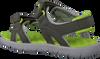 Groene TIMBERLAND Sandalen PERKINS ROW 2-STRAP  - small