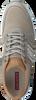 Grijze BJORN BORG Sneakers LEWIS  - small