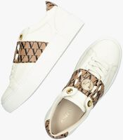 Camel JOSH V Lage sneakers LUCA  - medium