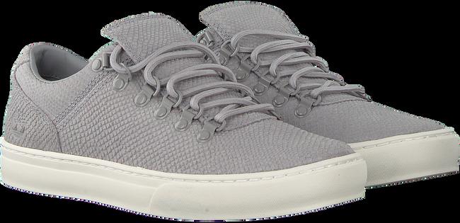 Grijze TIMBERLAND Lage sneakers ADV 2.0 CUPSOLE ALPINE OX  - large