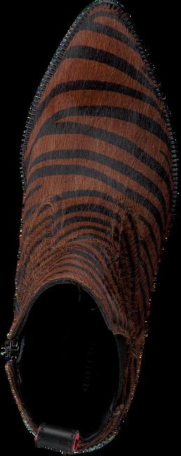 Bruine SCOTCH & SODA Enkellaarsjes ABBEY 1975111 - large