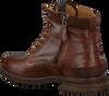 Cognac NEW ZEALAND AUCKLAND Sneakers FOXTON HIGH M  - small