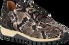 Beige VIA VAI Sneakers LYNN  - small
