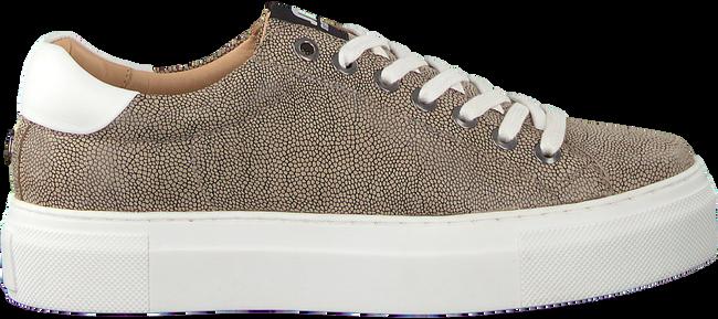 Beige MARUTI Sneakers TED - large