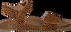 Bruine CLIC! Sandalen CL-GRASS  - small