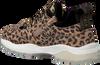 Bruine VINGINO Sneakers FENNA  - small