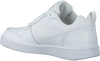 Witte NIKE Sneakers COURT BOROUGH LOW MEN  - small