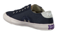Blauwe SUPERDRY Sneakers S286  - small