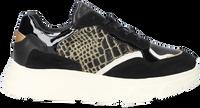 Zwarte TANGO Lage sneakers KADY FAT  - medium