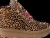 Cognac TORAL Sneakers 10995 - small
