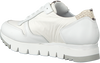 Witte NOTRE-V Sneakers AG251  - small