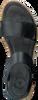 Zwarte CA'SHOTT Sandalen 17116 - small