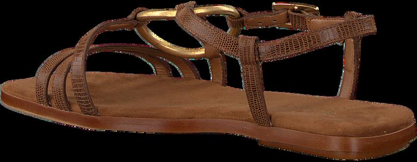Bruine MIREIA PLAYÀ Sandalen HERMOSA  - larger
