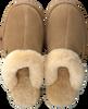 Camel WARMBAT Pantoffels BURLEY  - small