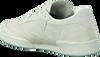 Groene REEBOK Sneakers CLUB C 85 WMN  - small