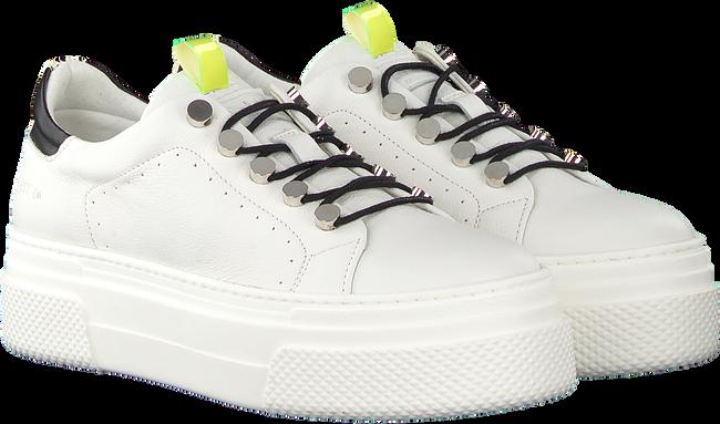 Witte RED RAG Sneakers 74176  - large