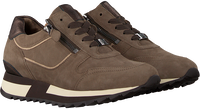 Taupe HASSIA Lage sneakers MADRID  - medium