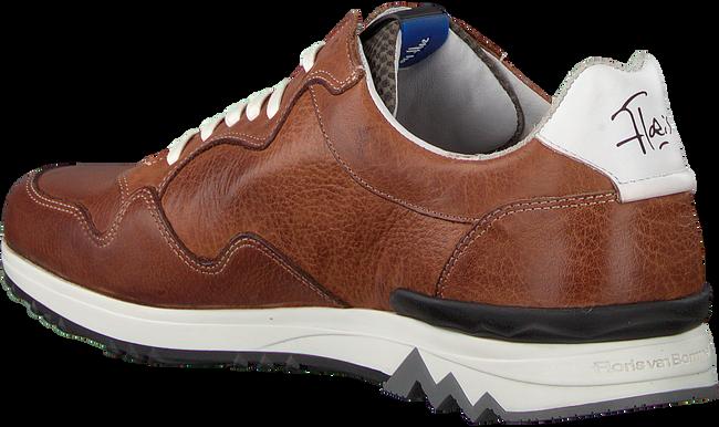 Cognac FLORIS VAN BOMMEL Sneakers 16238  - large