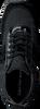 Zwarte CALVIN KLEIN Sneakers TEA - small