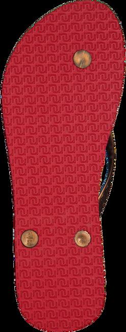 Rode UZURII Slippers ORIGINAL BASIC - large
