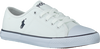 POLO RALPH LAUREN SNEAKERS DYLAND - small