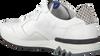 Witte FLORIS VAN BOMMEL Sneakers 16238  - small