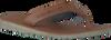 Cognac TOMMY HILFIGER Slippers BARI 1A  - small
