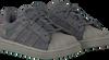 Grijze ADIDAS Sneakers SUPERSTAR KIDS 1  - small