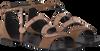 Bruine LOLA CRUZ Sandalen 312Z30BK  - small