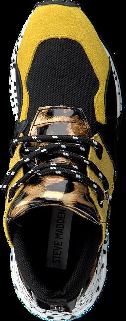 Gele STEVE MADDEN Sneakers CLIFF SNEAKER - large