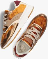 Bruine SCOTCH & SODA Lage sneakers VIVI  - medium