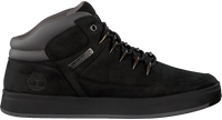 Zwarte TIMBERLAND Sneakers DAVIS SQUARE HIKER  - medium