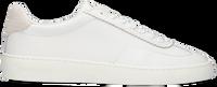 Witte SCOTCH & SODA Lage sneakers PLAKKA