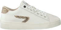 Witte HUB Lage sneakers HOOK LW CHEETA - medium