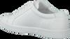 Witte CALVIN KLEIN Sneakers IGOR  - small