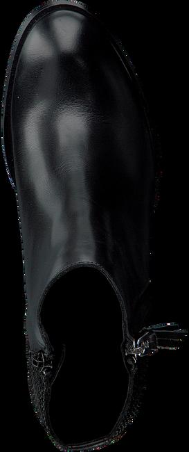 TOMMY HILFIGER ENKELLAARZEN P1285ENELOPE 14C - large