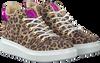Beige BULLBOXER Sneakers ALG500  - small