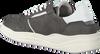Grijze NZA NEW ZEALAND AUCKLAND Sneakers KUROW II - small