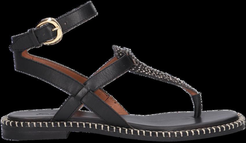 Zwarte MARUTI Sandalen AZIZA  - larger